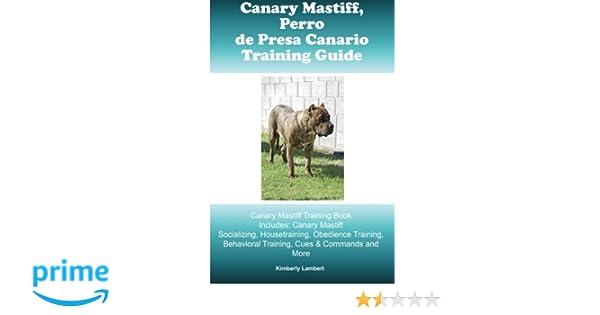 Canary Mastiff Perro De Presa Canario Training Guide Canary