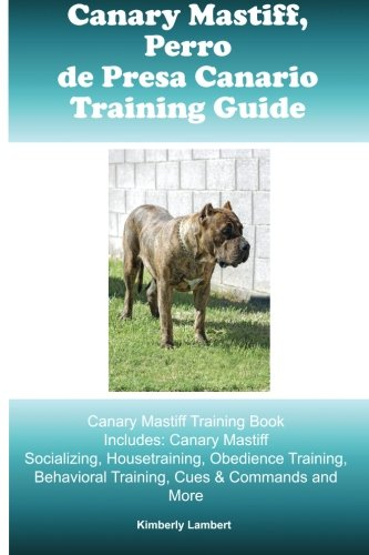 Canary Mastiff (Perro de Presa Canario) Training