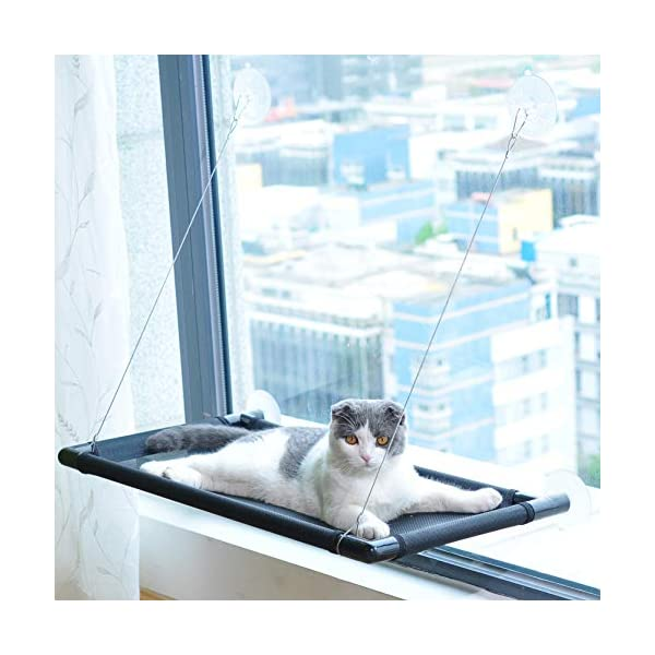Pakeway Cat Window Perch Hammock Cat Bed with Upgraded Version 4 Suction Cups, Safest Cat Bed for Large Cat can Holds Up to 50lbs (Black) 9