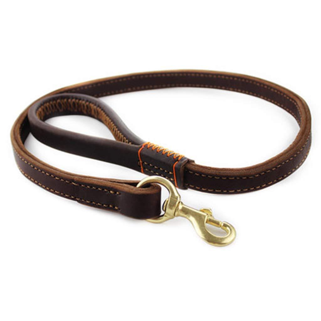 AosyGFR Pet Leash Rope Dog Leash Medium Large Dog Supplies