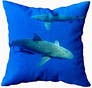 KIOAO 20X20 Pillow Case, Standard 20X20Inch Soft Square Throw Pillowcase Covers Fall Pillow Cover Sharks Hawaii Oahu Printed with Both Sides,Halloween