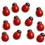 Fridge Magnets Set Magnets Cute Funny Office Magnets Kitchen Magnets Whiteboard Magnets,Ladybug
