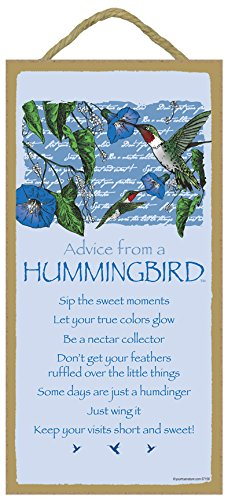 SJT ENTERPRISES, INC. Advice from a Hummingbird - 5