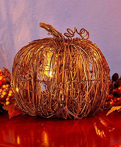 The Lakeside Collection Small Lighted Grapevine Pumpkin (Pumpkin Lights With Wicker)