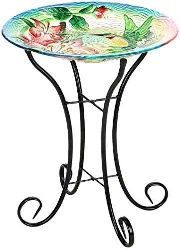 Winsome House Hummingbird Bird Bath with Stand by Winsome House