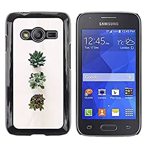 Exotic-Star ( Plant Art Flower Nature ) Fundas Cover Cubre Hard Case Cover para Samsung Galaxy Ace4 / Galaxy Ace 4 LTE / SM-G313F