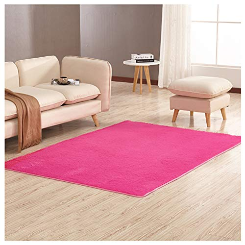 Rug Soft Indoor Modern Anti-Skid Shaggy Fluffy Living Room Carpets Children Room Mat Home Decor 4 Feet by 5.3 Feet, Hot Pink ()