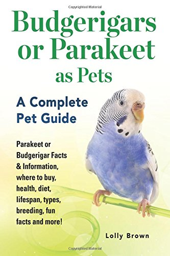 Budgerigars or Parakeet as Pets: Parakeet or Budgerigar Facts & Information, where to buy, health, diet, lifespan, t