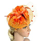 Big Flower Headband Netting Mesh Hair Band Cocktail Hat Party Fascinator, Orange, One Size