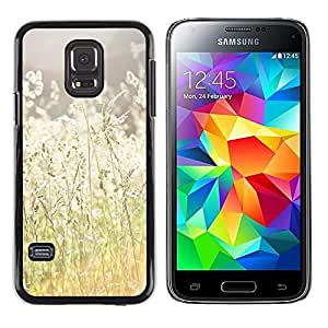 iKiki Tech / Estuche rígido - Summer Sun Field Hay Ray Nature Warm - Samsung Galaxy S5 Mini, SM-G800, NOT S5 REGULAR!