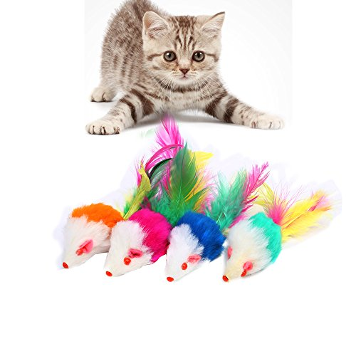 Gdpet cat toys 10 pieces including cat teaser wand for Fluffy cat toy