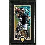 NFL Jacksonville Jaguars Blake Bortles Supreme Bronze Coin Panoramic Photo Mint, Black
