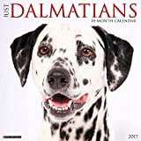 Just Dalmatians 2017 Wall Calendar (Dog Breed Calendars)