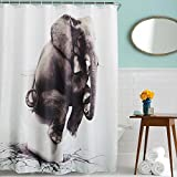 Funny Elephant Animal Sitting on The Toilet Print Shower Curtain Waterproof Polyester Fabric Bath Curtains Gray White 71 x 71 inch BROSHAN