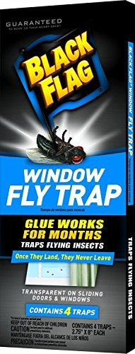 Black Flag Window Fly Trap(2Pack)