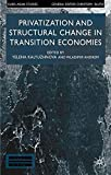 img - for Privatisation and Structural Change in Transition Economies (Euro-Asian Studies) book / textbook / text book