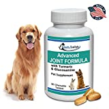 BestLife4Pets Glucosamine and Turmeric Joint Pain Relief Supplement for Pets; Advanced Arthritis Pain Relief Increases Mobility, Eases Joint and Hip Pain, and Reduces Inflammation
