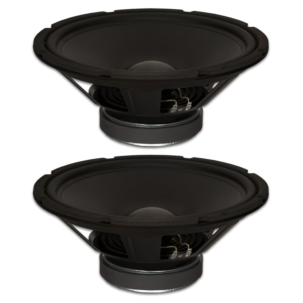 Goldwood Sound, Inc. Stage Subwoofer, Rubber Surround 12 Woofers 290 Watts Each 8ohm Replacement 2 Speaker Set (GW-1248-2)