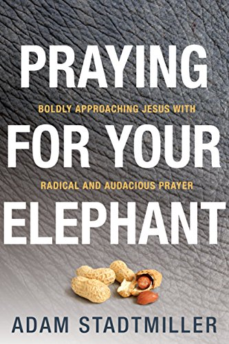 Praying for Your Elephant: Boldly Approaching Jesus with Radical and Audacious Prayer