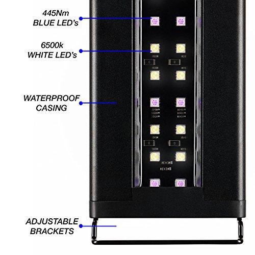 Current-USA-Satellite-Freshwater-LED-Plus-Light-for-Aquarium