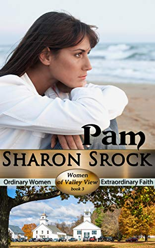 Pam: inspirational women's fiction (The Women of Valley View Book 3)