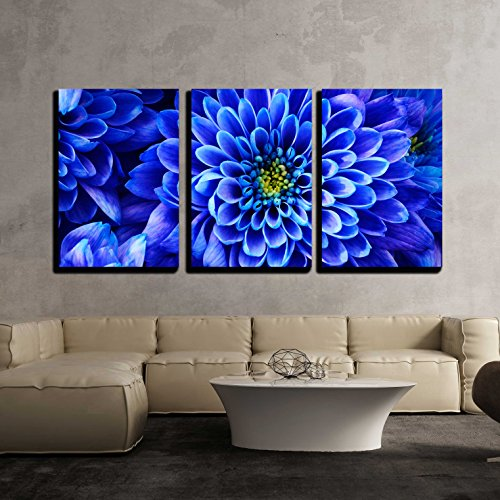 "wall26 - 3 Piece Canvas Wall Art - Close up of blue flower : aster with blue petals and yellow heart - Modern Home Decor Stretched and Framed Ready to Hang - 16""x24""x3 Panels"