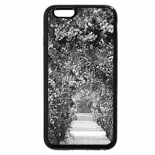 iPhone 6S Plus Case, iPhone 6 Plus Case (Black & White) - rose archway