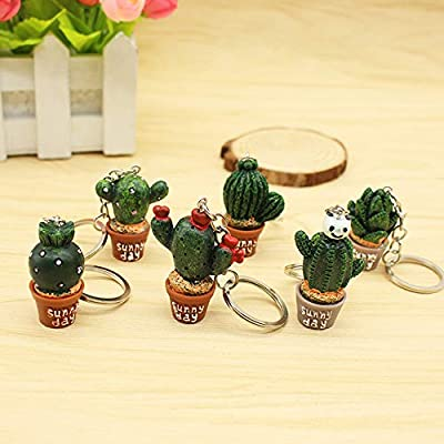Finduat 12 Pcs Creative Cute Potted Plant Cactus Succulents Shape Keychains Key Rings Chain for Bag Charm Pendant Jewelry: Office Products