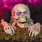 Color-Changing Mummy Skull & Hands - Halloween Party Supplies & Decorations & Yard Decor
