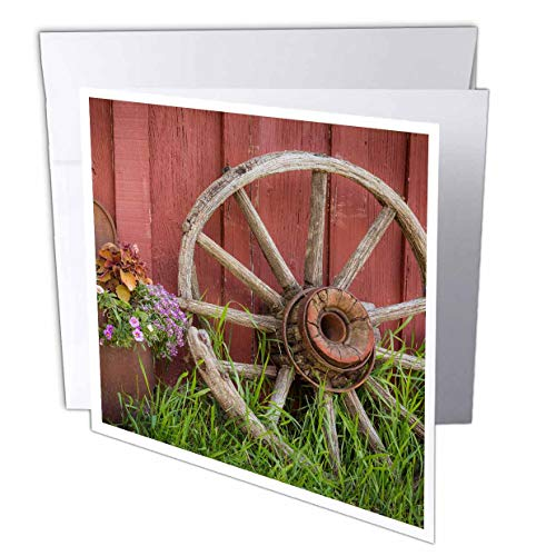 (3dRose Danita Delimont - Farms - Vintage Wagon Wheel and Flowers Against a red barn. - 12 Greeting Cards with envelopes (gc_313015_2))