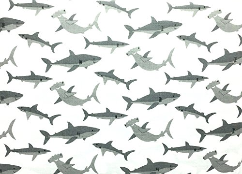 100 Shark - 4