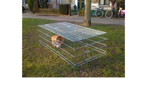 animalmarketonline cerca jaula Valla Caseta para perros gatos Conejos Cavie L144 X 112 cm x H 60 cm): Amazon.es: Productos para mascotas