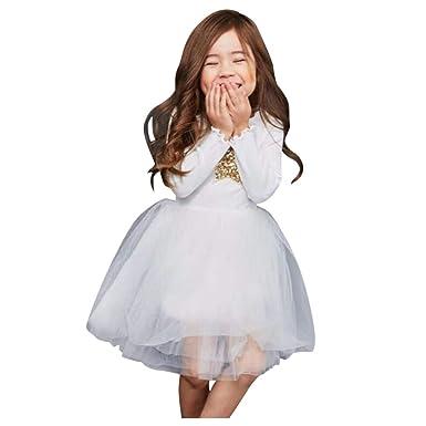 Squarex Vestido De Fiesta Para Niñas De 1 A 6 Años Vestido De Tul De Tul Con Encaje Para Niñas Y Bebés Vestido De Fiesta De Otoño E Invierno