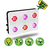 LED Grow Light for Indoor Plants Veg/Flower/Bloom BloomBeast Full Spectrum COB 600w LED Grow Light Dimmable B600 12 Band with UV IR for Hydroponic Grow(BIG BUDS) (600w)