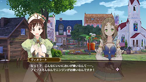 Nelke & the Legendary Alchemists: Ateliers of the New World (20th Anniversary Box) [Japan Import] by Koei Tecmo Games (Image #9)