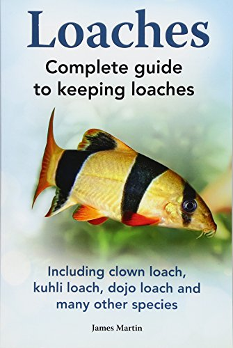 Loaches: Complete Guide to Keeping Loaches. Including Clown Loach, Kuhli Loach, Dojo Loach and Many Other Species. (Aquarium Loach Clown)