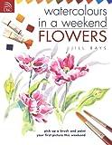 Watercolors in a Weekend, Jill Bays, 0715316370