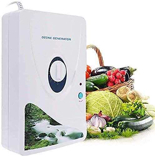 LALEO 600Mg/H 220V 110V Ozone Generator Ozonator Ionizer O3 Timer Air Purifiers Oil Vegetable Meat Fresh Purify Air Water