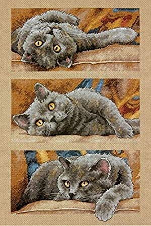 Dimensions 70-35301 Max the Cat Counted Cross Stitch Kit, 14 Count Beige...