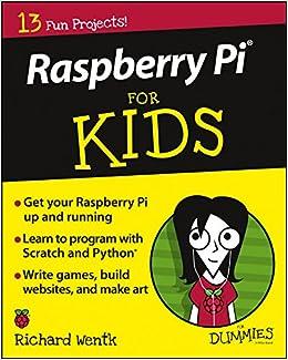 Raspberry Pi For Kids For Dummies por Richard Wentk