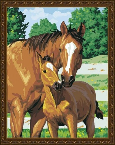 Top 5 best diy oil painting horse for sale 2017 for Oil paintings for sale amazon