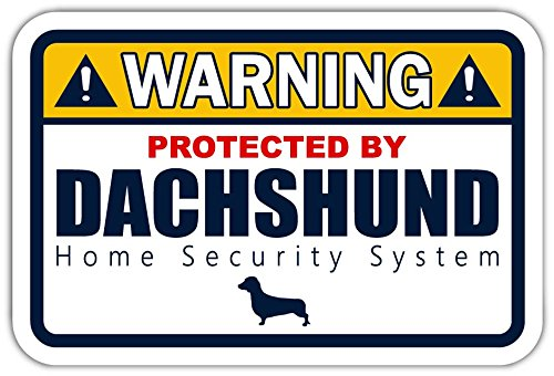 (Warning Protected by Dachshund Funny Warning Dachshund Home Security System Vinyl Bumper Sticker Decal 4