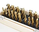 Accusize Industrial Tools 20 Pc H.S.S. Tin Coated End Mill Set, 2 Flute and 4 Flute, Cutting Diameter from 3/16'' up to 3/4'', 1810-0100