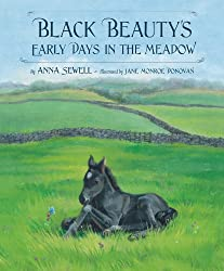 Black Beauty's Early Days in the Meadow (Classic Picture Books)
