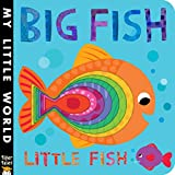 img - for Big Fish Little Fish (My Little World) book / textbook / text book