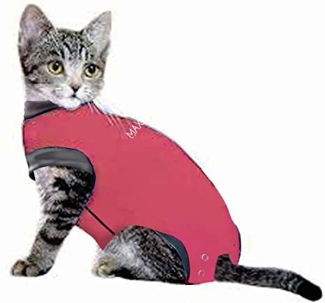 d9f28430f689 MAXX Cat Medical Pet Care Clothing & After Surgery Wear for Cats & Recovery  Shirt for