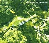 Aquarium by Rauschfaktor
