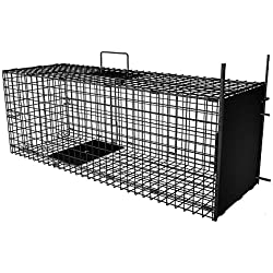 """AMAGABELI GARDEN & HOME Humane Live Animal Trap 31""""X10.5""""X11.5"""" Catch Release Cage for Nuisance Rodents Control Mole Gopher Opossum Skunk Groundhog Squirrel Spay Feral Stray Cats Rescue Wild Rabbits"""