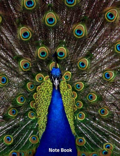 Note Book: Peacock in Full Display, Notebook, Wide lined, 200 paged 7.44