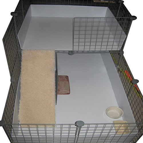Coroplast for guinea pig cage